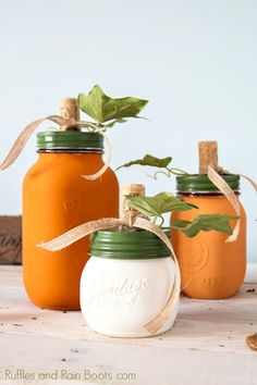 Use a little chalk paint to transform mason jars into adorable pumpkin mason jars for the holiday season. Click through to see the quick and easy tutorial (psst - they are just too cute)! jar Craft Pumpkin Mason Jars with Chalk Paint Halloween Mason Jars, Fall Mason Jars, Mason Jar Diy, Diy Christmas Mason Jars, Mason Jar Pumpkin, Diy Pumpkin, Mason Jar Projects, Mason Jar Crafts, Bottle Crafts