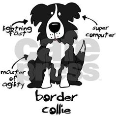 Learn what makes your border collie a purebred. Listed in this clothes and items are the most important characteristics a border collie should have. It's the perfect gift for Dog lovers!