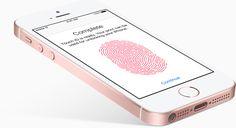 Apple sa kvôli iPhonu SE dostal do začarovaného kruhu, musí ho predstaviť aj budúci rok