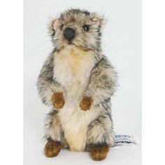 "Hansa Marmot Plush, 6"" Hansa,http://www.amazon.com/dp/B00CIWHP7O/ref=cm_sw_r_pi_dp_4kGQsb0S08X5J7MJ"