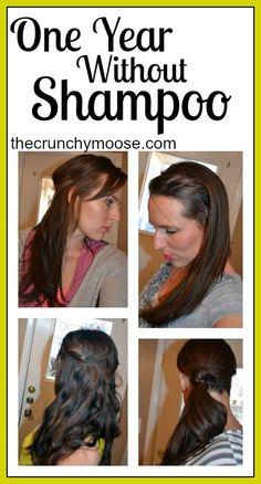 One year without shampoo - thecrunchymoose.com