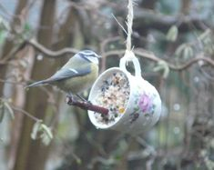 A great craft idea to while away the cold winter days. Use vintage china to make plant pots, bird feeders, light fittings or candles. Outdoor Projects, Garden Projects, Garden Care, Big Garden, Easy Garden, Winter Garden, Vintage China, Yard Art, Bird Feathers