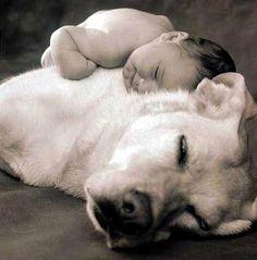 Risultato della ricerca immagini di Google per http://www.ideazampa.com/wp-content/uploads/bambini-cane.jpg