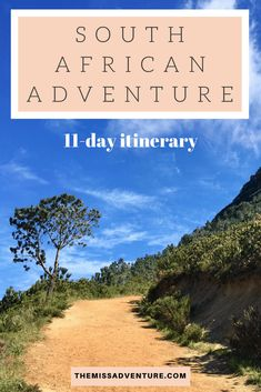 The MissAdventure inspires women to explore the globe together! Lions Head Cape Town, Table Mountain, Destin Beach, City Break, Africa Travel, Day Trip, Penguins, The Dreamers, South Africa