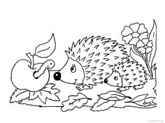 163 Nejlepsich Obrazku Z Nastenky Jezek Kid Crafts Hedgehog Craft