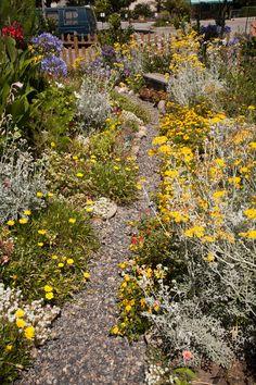 Verge Gardens Perth08 Garden Pinterest Perth Gardens and