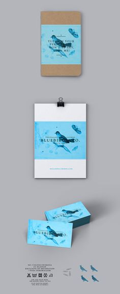 Bluebirds&Co. by Zdunkiewicz, via Behance