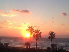 Galveston mornings!