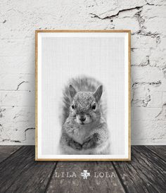 Cute Squirrel Wall Art Print, Black White and Grey Nursery Decor, Modern Minimalist Printable Instant Download, Peekaboo Animals by Lila and Lola.