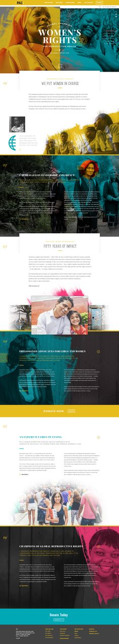 Dribbble - PAI-AnnualReport.jpg by Forefathers™ - http://pai.org/annual-report