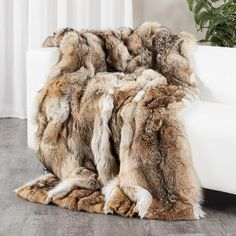 Shop FurSource for the best selection of Premium Full Pelt Fur Blankets. Buy the Custom Full Pelt Coyote Fur Blanket / Fur Throw by FRR with fast same day shipping. Around The Fur, Black Couches, Fur Pillow, Fur Accessories, Fur Blanket, Warm Blankets, Throw Blankets, Faux Fur Throw