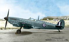 EBA - RHAF.  Spitfire   Mk.IXe.   337th Sq.,  R.H.A.F. Greece  by Markos Danezis