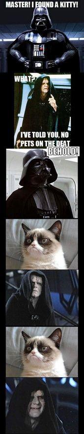 Grumpy Cat Joins the Dark Side #starwars #grumpycat #LOL