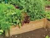 Moestuin.nl   Alles voor het zelf kweken van groenten fruit en kruiden