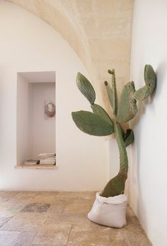 Room decoration using cactus is never ending. Starting from the real cactus, cactus displays, to the cactus made of stone. Methods, planting media, and pots used to plant cactus and important infor… Interior And Exterior, Interior Design, Stone Interior, Interior Plants, Interior Minimalista, European Home Decor, Cacti And Succulents, Indoor Plants, Indoor Cactus