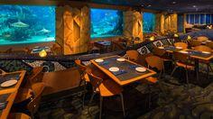 Best Restaurants in Disney's Epcot! #disney #epcot