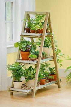 Jardín vertical en repisa tipo escalera.