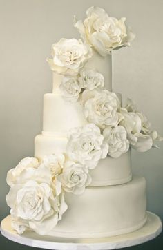 i wouldd love to do a weddingg cake like this, onlyy i wouldd do coloredd flowers to matchh myy color scheme.
