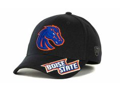 cd714280b 95 Best Boise State images in 2013 | Boise state football, Boise ...
