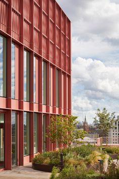 Duggan Morris builds office with millennial-pink exterior in King's Cross