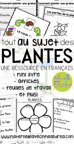 Les plantes (FRENCH Plants Worksheets and Activities) Comment Planter, Kindergarten Classroom, Classroom Ideas, Outdoor Education, Plant Science, Parts Of A Plant, French Lessons, France, Writing Paper