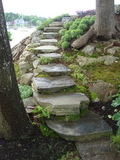 Fieldstone steps wrap down and around a slope.