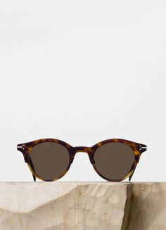 Julia Sunglasses in Dark Havana and Havana Acetate with Brown Lenses - Céline