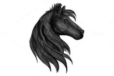 Black horse head. $6.00