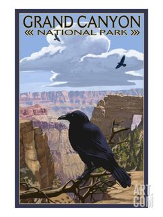 Grand Canyon National Park - Ravens and Angels Window Print at Art.com