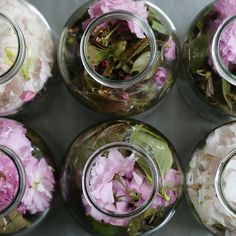 八重桜とシャクナゲの花酵母を仕込んでいます。