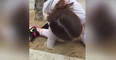 She Stuck Her Arm Down A Drain Pipe...What This Little Girl Pulled Out Is Amazing Shocking News, Little Girls, Arms, Amazing, Animals, Toddler Girls, Animales, Animaux, Animal