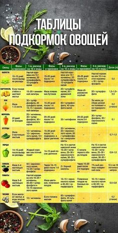 Pin on garten Summer House Garden, Dream Garden, Vegetable Garden Design, Veg Garden, Farm Gardens, Outdoor Gardens, Organic Gardening, Gardening Tips, Kitchen Gardening