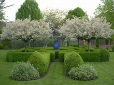 "Make the most of a small garden by planting flowering fruit trees in a ""formal"" garden setting with a fountain. Just because it's useful doesn't mean it can't be beautiful"