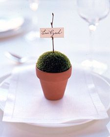 potted plant place card