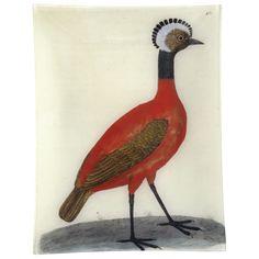 John Derian Company Inc — #2 - Red Peruvian Hen