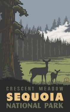 Crescent Meadow- Sequoia National Park Pal 1235 - Paul Lanquist