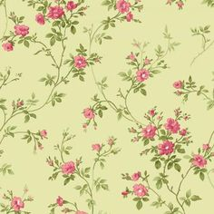 Bolt End 31 inches - Poppies Delicate Vine Cream by Maywood Studio Cotton Fabric Yardage Layer Cake Patterns, Jelly Roll Patterns, Daisy, Shops, Studios, Quilt Kits, Love Sewing, Maywood Studio, Fabric Design