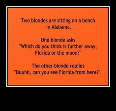 Blonde jokes. And I'm not being mean, because I am blonde. Or a variation of it.