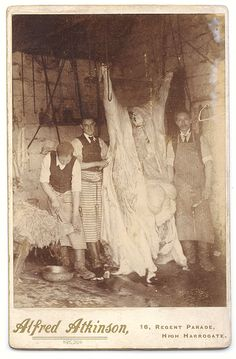 [cabinet card, occupational portrait of three butchers preparing a steer]. Alfred Atkinson via Capitol Gallery, Cabinet Cards & CDVs Vintage Pictures, Old Pictures, Vintage Images, Old Photos, Horror Costume, Meat Shop, Horror House, Butcher Shop, Time Photo