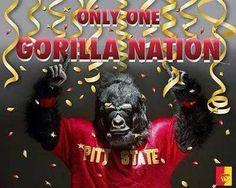 Gorilla Nation