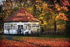 Phoenix Park Tea Rooms - Dublin Print by Barry O Carroll Dublin City, Beverly Hills, Fine Art America, Instagram Images, Design Inspiration, Park, House Styles, Photography, Phoenix