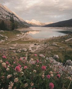 Time to run in the wildflowers swim in the lakes and climb up the mountains! Pho… Time to run in the wildflowers swim in the lakes and climb up the mountains! Photo by Monascherie . Nature Aesthetic, Flower Aesthetic, 80s Aesthetic, Aesthetic Collage, Landscape Photography, Nature Photography, Travel Photography, Letter Photography, Photography Flowers