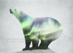 Polar bear artPolar bear printPolar bear by EnchantedWhispersArt