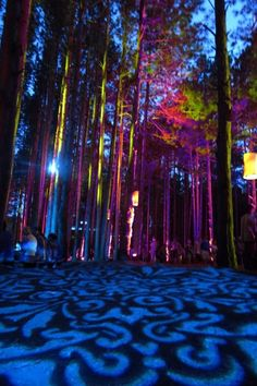 Electric Forest Festival- I wanna go next year!!!! (2014)