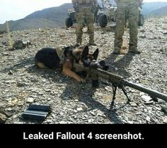 """Do you see the target?"""" Bark fallout fallout 4 dogmeat fallout dogmeat twitter"""