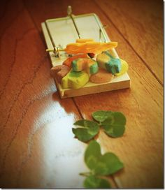 How to Trap a Leprechaun. Sooo doing this with Alyssa tonight! Leprechaun Trap, Four Leaf Clover, Holiday Fun, St Pattys, Funny Things, Ethnic Recipes, Kid Stuff, Cheer, Kids