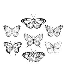 Butterfly graphic black and white seamless pattern background sketch illustration vector , Red Ink Tattoos, Mini Tattoos, Body Art Tattoos, Tattoo Drawings, New Tattoos, Small Tattoos, Sleeve Tattoos, Butterfly Sketch, Vintage Butterfly Tattoo