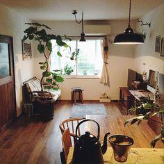女性で、の男前/雑貨/観葉植物/白壁/中古住宅/リノベーション…などについてのインテリア実例を紹介。「ラグ新調しました。セールで激安でした♪」(この写真は 2015-07-22 18:18:36 に共有されました)