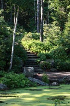 Scenes from the Coastal Maine Botanical Gardens | Fine Gardening