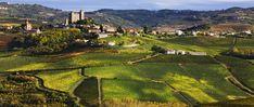 For Sale Villa With Garden And Car Garage In Piedmont